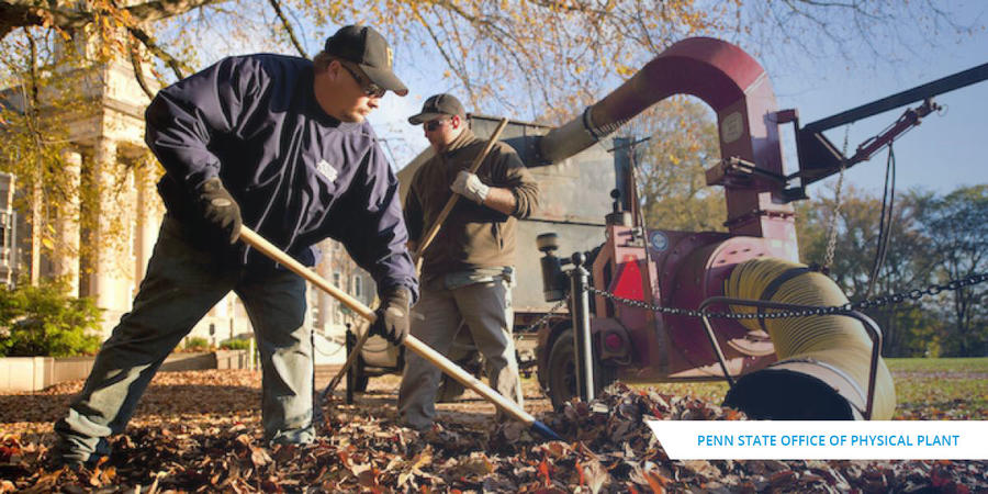 Office of Physical Plant Raking Leaves