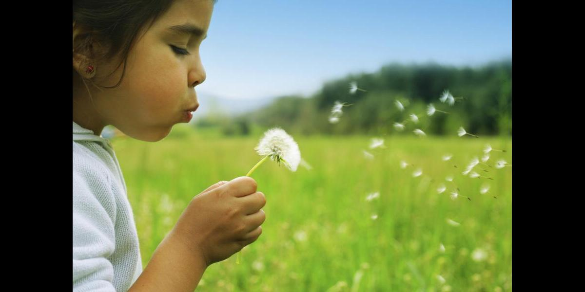 Child playing in field of flowers